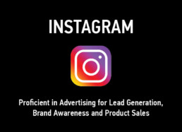 Instagram Advertising Proficient